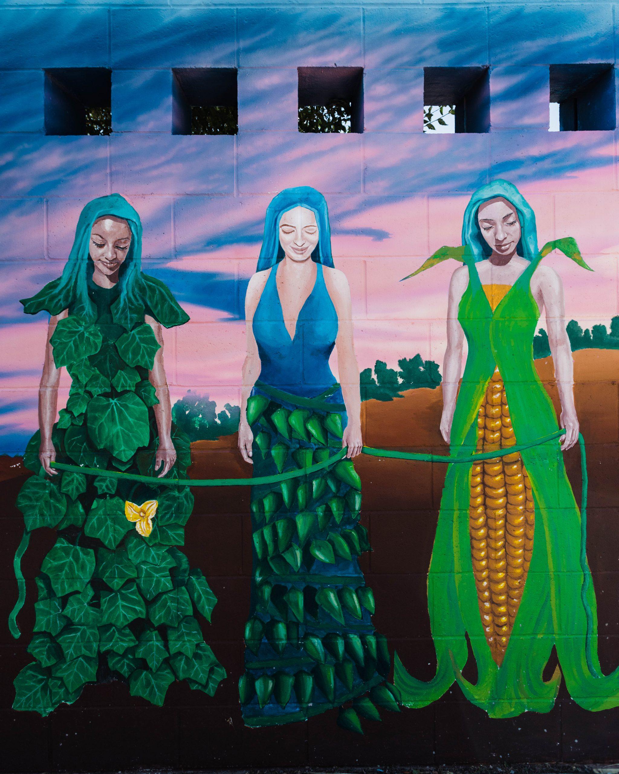 Agri-Cultura Network — COVID 19 Relief Fund Recipient