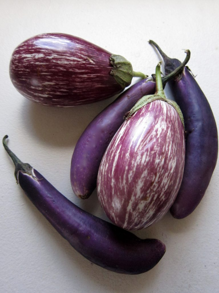 Locally grown eggplants come in a variety of shapes and colors. They are far superior in taste and texture to typical store-bought eggplant.