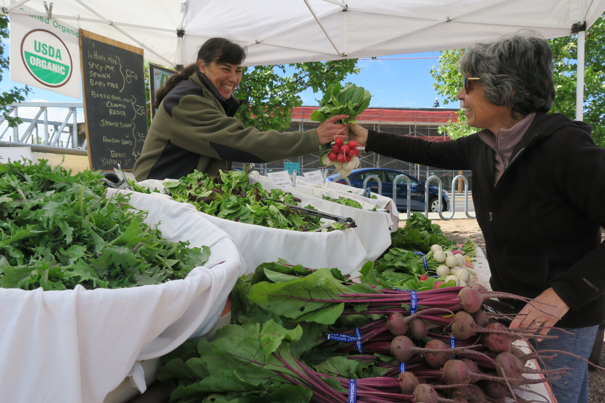 Greens Hot at Growers' Markets