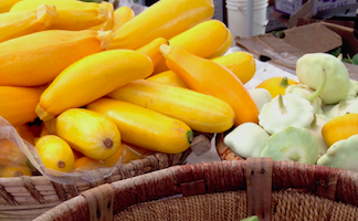 Six More Ways to Eat Local Summer Squash